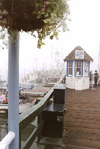 Steveston boardwalk view